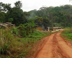 congo-road01