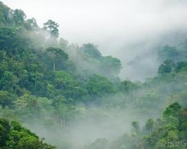 Chapitre 13.Environnement et Changement Climatique